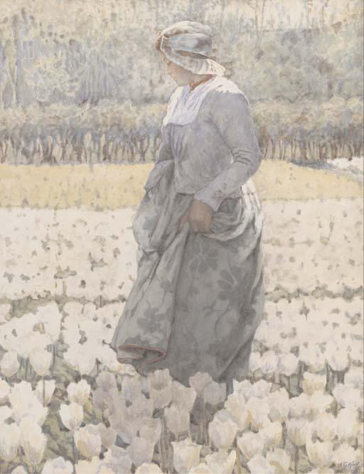 tiptoeing thro the tulips