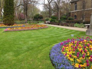 Benches in St John's Wood Church Gardens