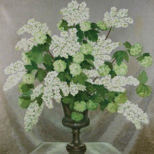Lilac and Guelder Rose  by  Hannah Gluckstein  Manchester Art Gallery