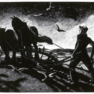 November ploughing by Clare Leighton