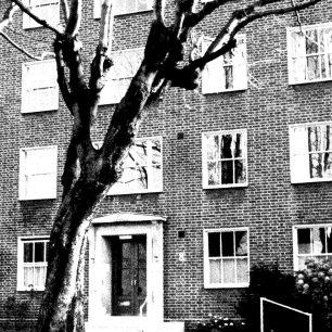 Francis House | Octavia Housing