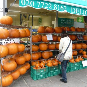 Pumpkins for Thanksgiving | Louise Brodie