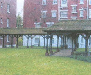 Elm Tree Court gardens 2013