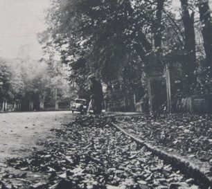 St Johns Wood Park postwar